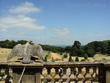 Wight - 2013. A breathtaking view from the window of Osborne House.