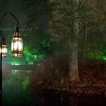Light trail in the Kew Gardens